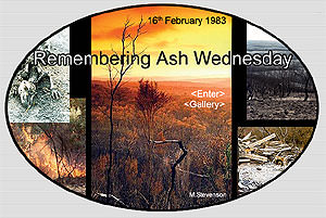Ash Wednesday did not begin in 1983