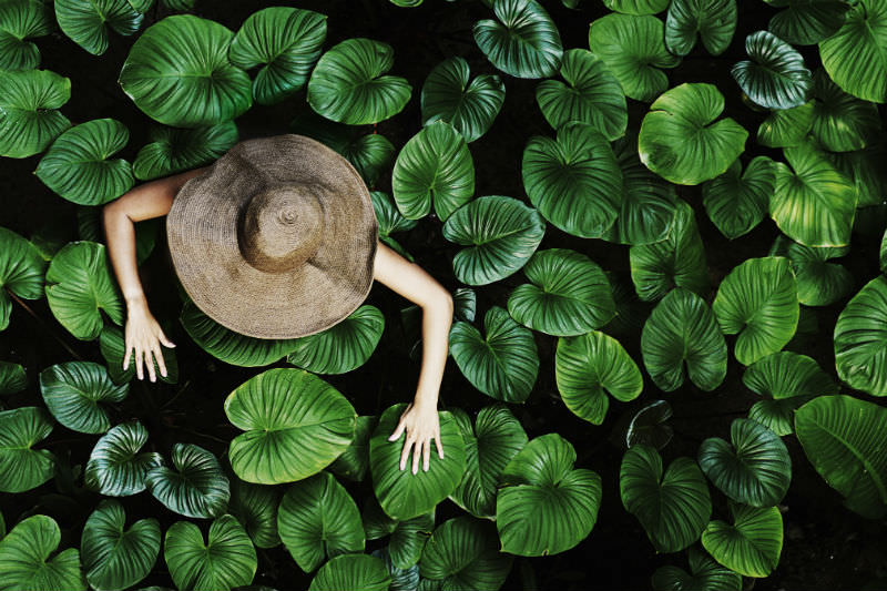 Woman among tropical leaves (Getty images/David Trood)
