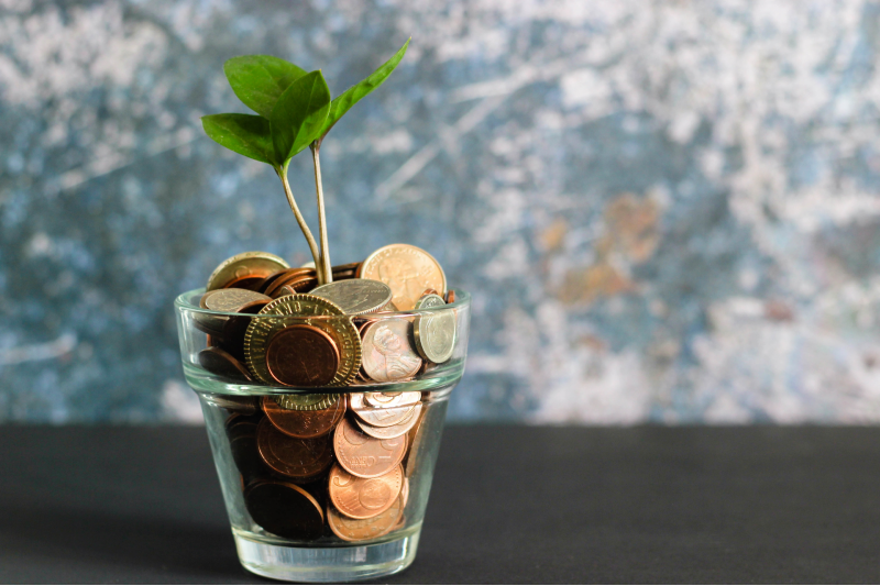 Main image: Tree growing out of coins (Micheile Henderson/Unsplash)