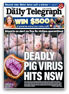 Deadly Pig Virus Hits NSW