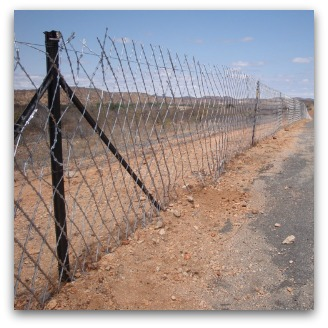 Fence, South Africa border