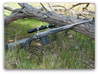 Hunting rifle propped on a log