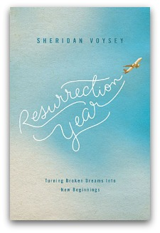 Resurrection Year by Sheridan Voysey. Book cover portrays title written in sky by an aeroplane