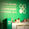 Panel at Climate Conference in Warsaw
