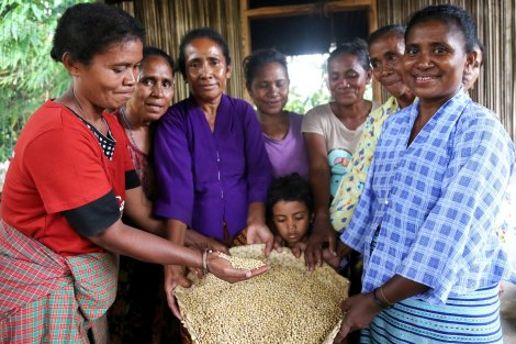 Timorese women surround bag of grain