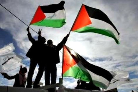 Palestine solidarity flag waving