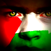 Palestine solidarity painted face