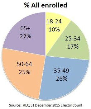 Pie chart breaking down voters by age