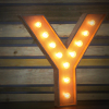 Stylised letter Y