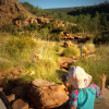 Little girl exploring the outback