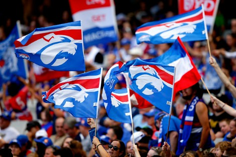 Western Bulldogs flags