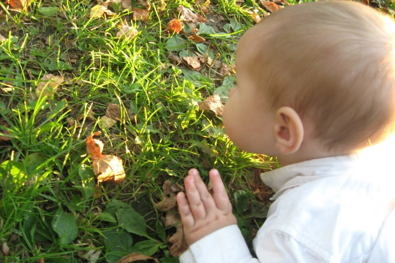 Baby examining leaves and grass