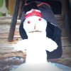 Idiosyncratic snowman