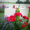 Graves at Tyne Cot cemetery near Ypres