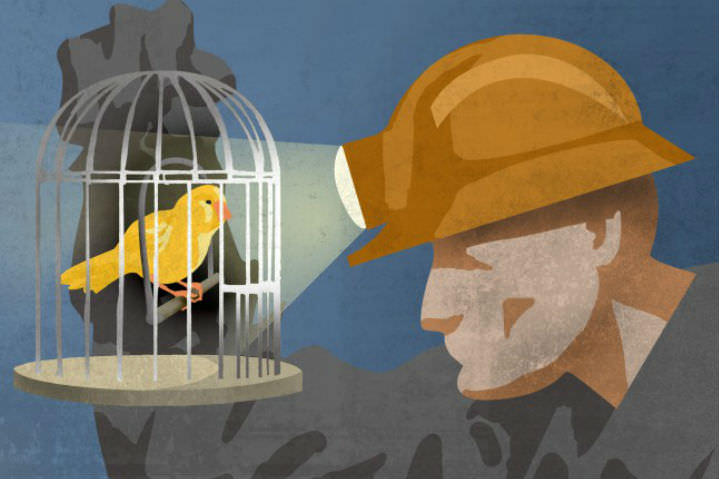 Miner with canary