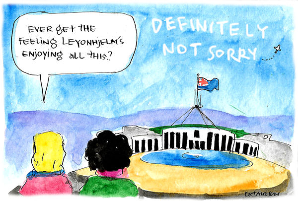 'Ever get the feeling Leyonhjelm's enjoying this?' quips a bystander as a skywriter writes DEFINITELY NOT SORRY above Parliament house. Cartoon by Fiona Katauskas