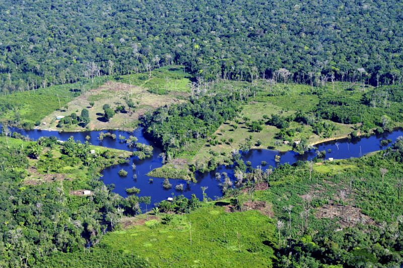 Aerial view of the Amazon Rainforest, near Manaus, the capital of the Brazilian state of Amazonas. Photo by Neil Palmer (CIAT) via Flickr