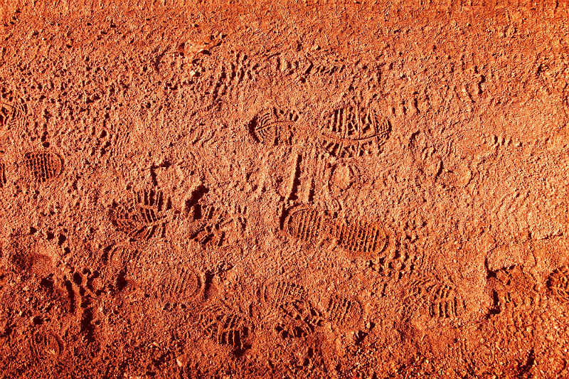 Bootprints on soil image by robertiez via Getty