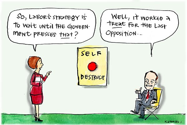 Fiona Katauskas' cartoon 'Opposition? What Opposition?' shows a staffer asking 'So, Labor's strategy is to wait until the government presses THAT?', indicating a large red button marked 'self-destruct'. A smug, seated Bill Shorten replies 'Well, it worked a treat for the last Opposition ...'
