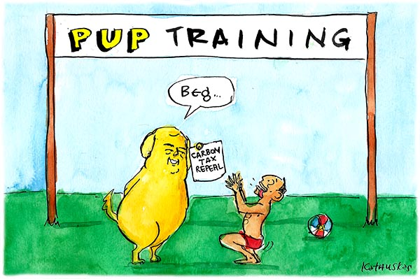 Fiona Katauskas' cartoon 'Wagging the dog' shows Tony Abbott begging at the feet of Clive Palmer.