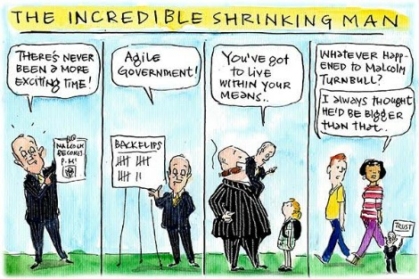 Malcolm Turnbull shrinks as he becomes less impressive and trustworthy. Cartoon by Fiona Katauskas